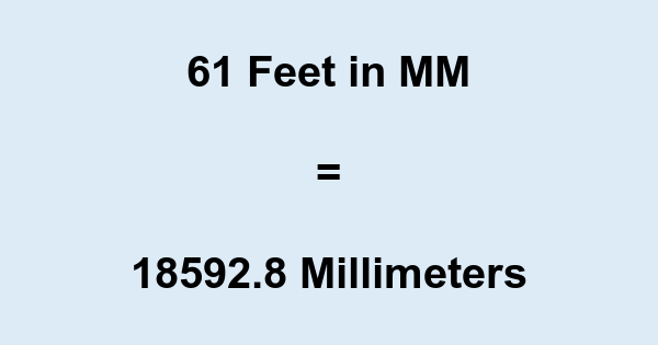 61 Ft in MM